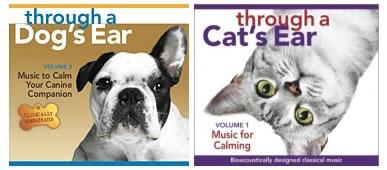 veterinarian-springfield-mo-through-a-dogs-ear