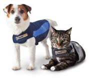 veterinarian-springfield-mo-thunder-shirt