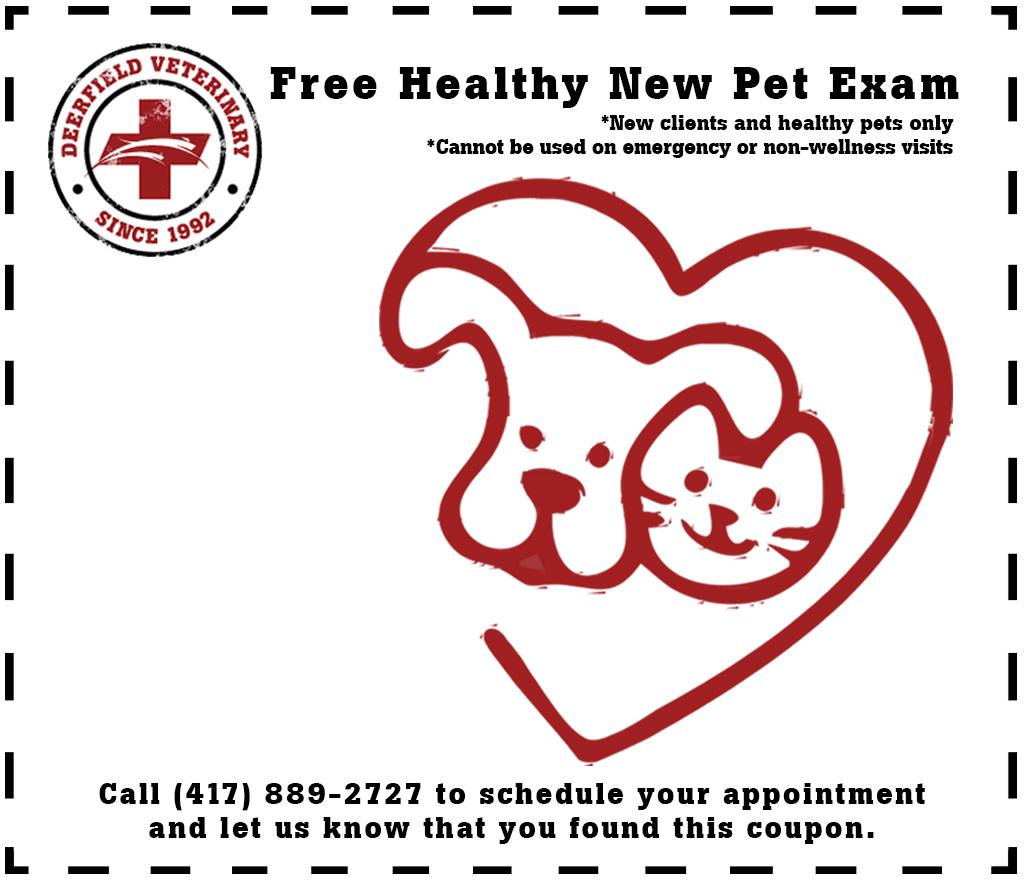 Free Healthy New Pet Exam - Springfield, MO - Deerfield Veterinary Hospital