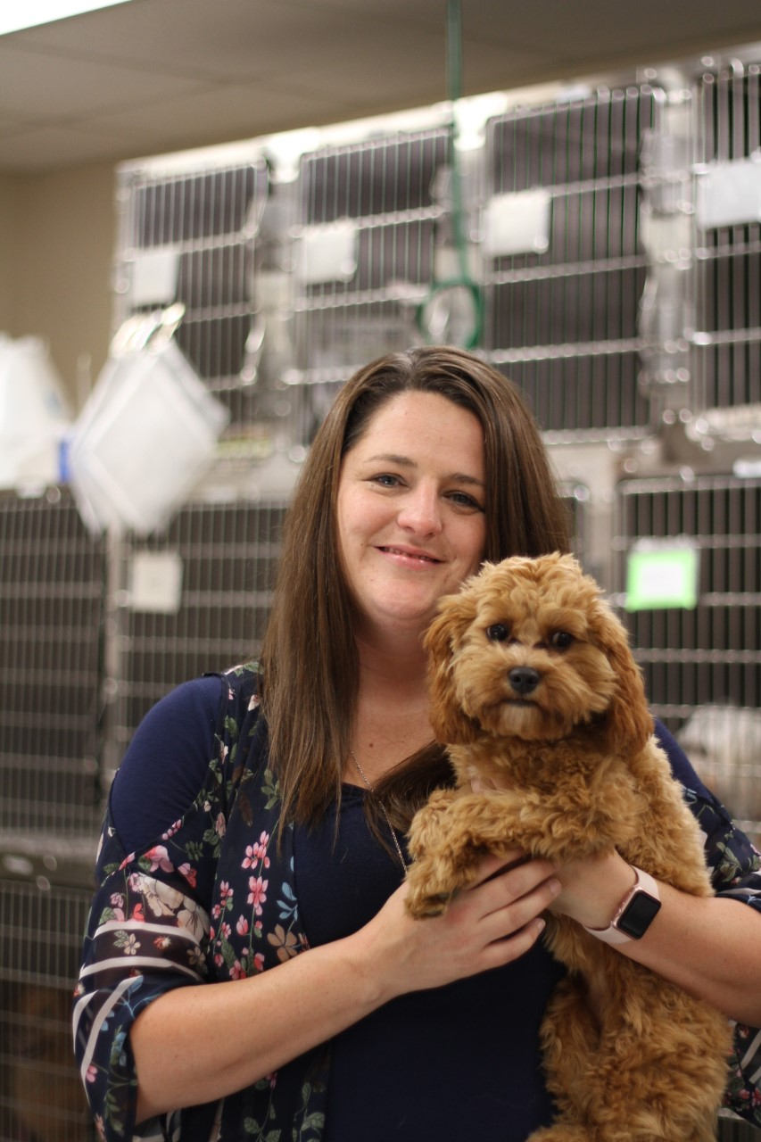 Amanda Wake - Springfield, MO - Deerfield Veterinary Hospital